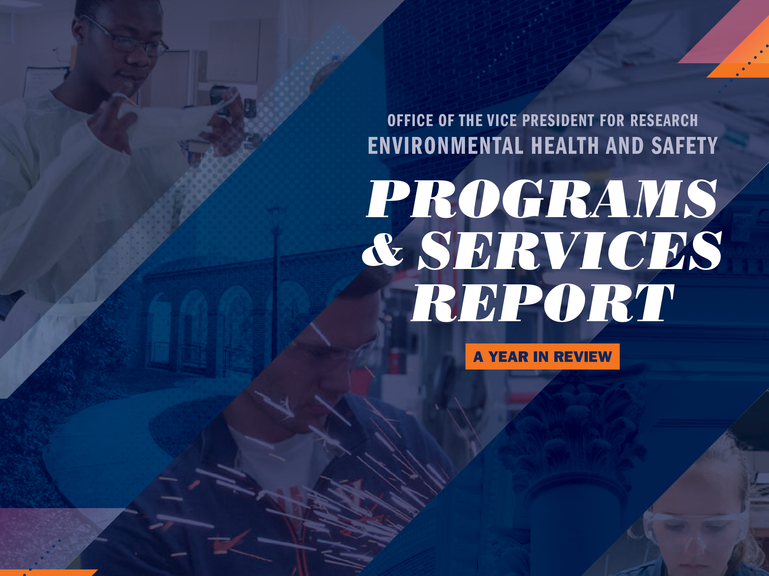 Programs And Services Report 2018